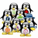 linux_distribution_chooser